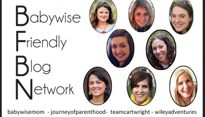 The Babywise Friendly Blogging Network