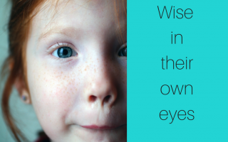 "How to Solve the ""Wise in Their Own Eyes"" Problem (BFBN guest post)"