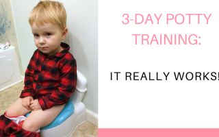 3-Day Potty Training Method: Does It Work?