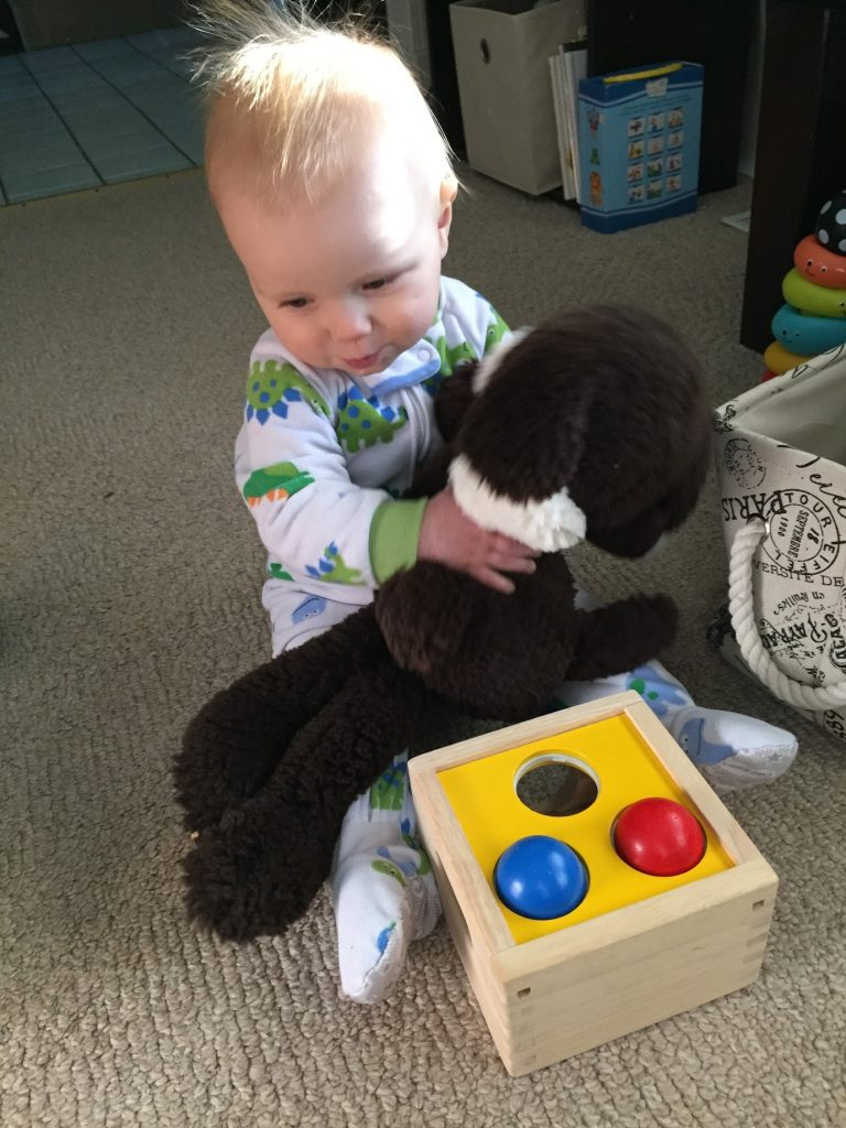 Little baby boy playing holding a stuffed dog.